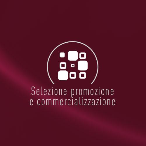 Servizio di selezione promozione e commercializzazione